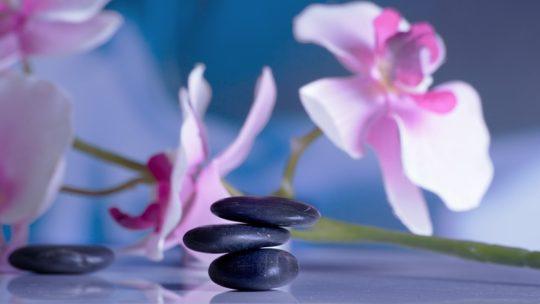 Qué es la Terapia holística y quién la necesita